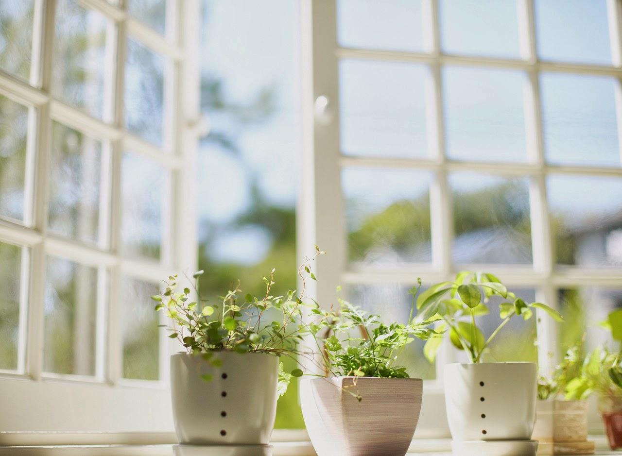 Как сделать свежее воздух в комнате